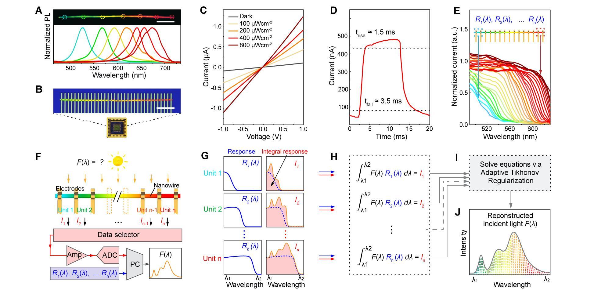Computational Spectrometer